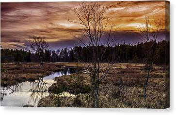 Fire In The Pine Lands Sky Canvas Print