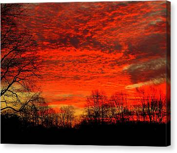 Fire In The Sky Canvas Print by Aron Chervin