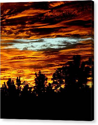 Fire In The Sky Canvas Print by Dana  Oliver