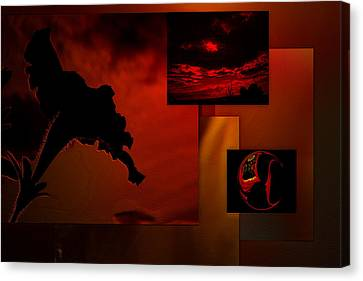 Fire In The Sky Canvas Print by Irma BACKELANT GALLERIES