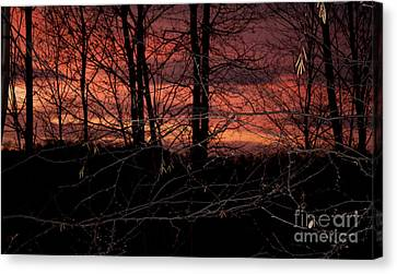 Fire In The Sky Canvas Print by Robert Sander