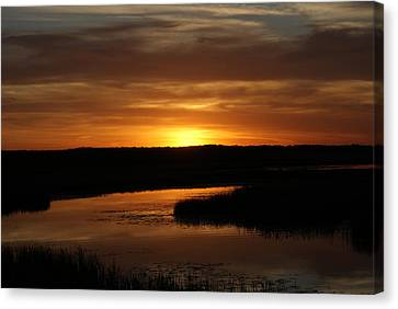 Fire In The Sky Canvas Print by Ron Read