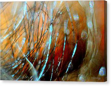 Fire In The Wind Canvas Print by JCYoung MacroXscape