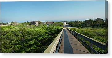 Fire Island Panorama  Canvas Print by Alida Thorpe
