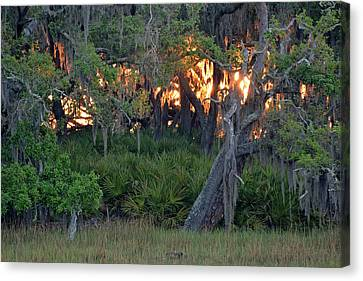 Canvas Print featuring the photograph Fire Light Jekyll Island 02 by Bruce Gourley