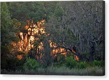 Canvas Print featuring the photograph Fire Light Jekyll Island 03 by Bruce Gourley