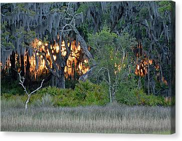 Canvas Print featuring the photograph Fire Light Jekyll Island by Bruce Gourley
