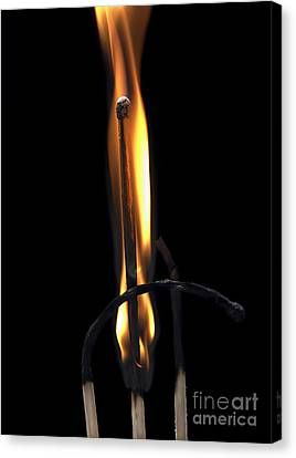 Fire Match Canvas Print by Michal Boubin
