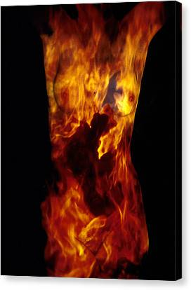 Fire One  Canvas Print by Arla Patch