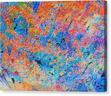 Fire Opal Canvas Print by Stephanie Grant