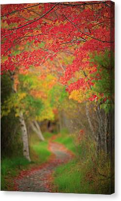Canvas Print featuring the photograph Fire Red Path  by Emmanuel Panagiotakis
