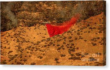 Fire Retardant Canvas Print