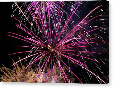 Pyrotechnic Canvas Print - Fire Shower by Marnie Patchett