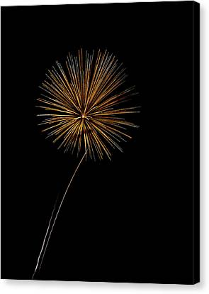Fire Works Bursts Canvas Print by Gary Langley
