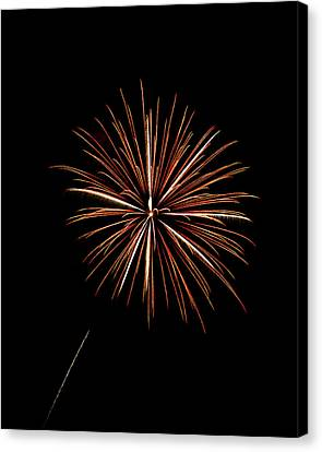 Fire Works Canvas Print by Gary Langley