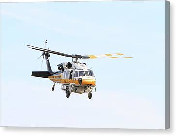 Firehawk In Flight Canvas Print by Shoal Hollingsworth