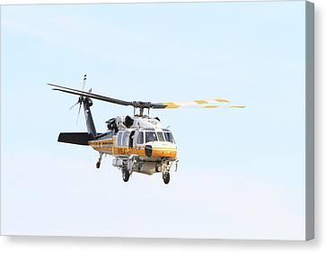 Firehawk In Flight Canvas Print