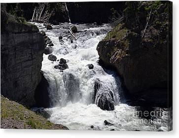 Beauty In Nature Canvas Print - Firehole Falls Torrent Into Firehole River In Yellowstone National Park by Shawn O'Brien