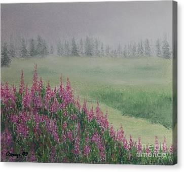 Fireweeds Still In The Mist Canvas Print by Stanza Widen
