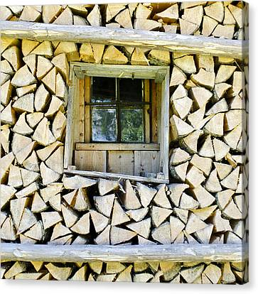 Shed Canvas Print - Firewood by Frank Tschakert