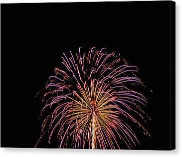 Firework 1 Canvas Print