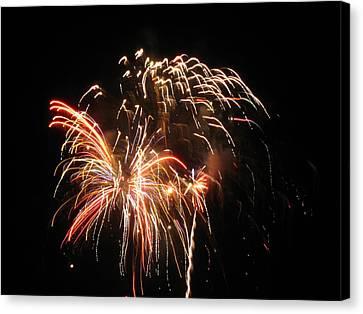 Firework 1 Canvas Print by Michael Albright