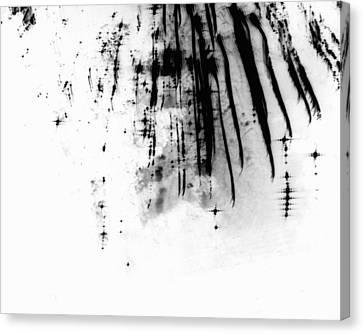 Firework Abstract 6 Canvas Print