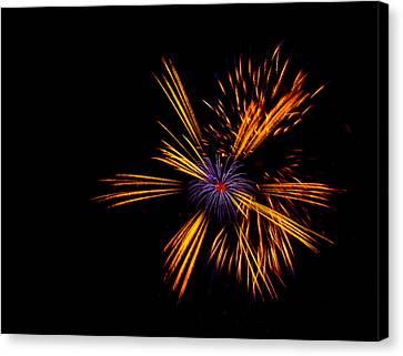 Firework Fun Canvas Print by Dawn OConnor