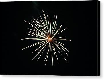 Fireworks 002 Canvas Print by Larry Ward