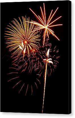 Fireworks 1 Canvas Print by Michael Peychich