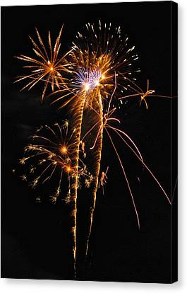 Fireworks 2 Canvas Print by Michael Peychich