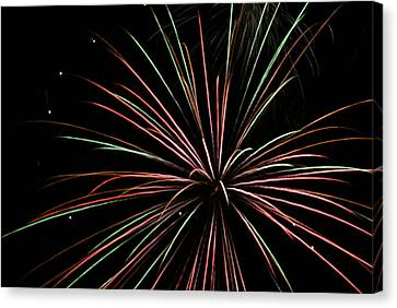 Fireworks 2 Canvas Print by Ron Read