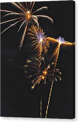 Fireworks 3 Canvas Print by Michael Peychich