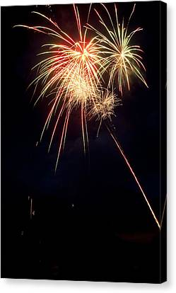 Fireworks 49 Canvas Print by James BO  Insogna