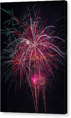 Fireworks Bursting In Night Sky Canvas Print by Garry Gay
