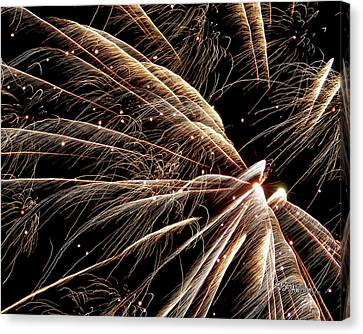 Canvas Print featuring the photograph Fireworks Evolution #0710 by Barbara Tristan