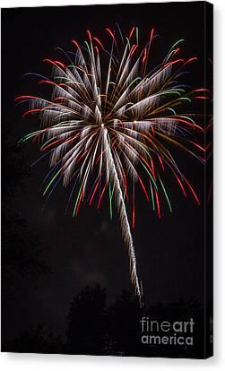 Fireworks Flower Canvas Print