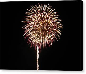 Fireworks Canvas Print by Michael Albright