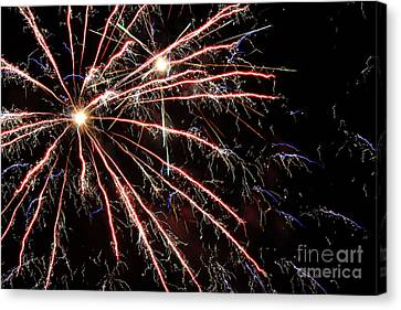 Fireworks Spectacular Canvas Print by Terry Weaver