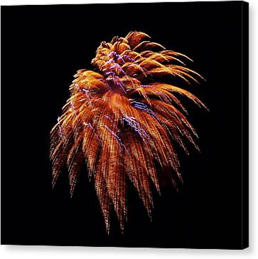 Fireworks Canvas Print by Stacie Gary