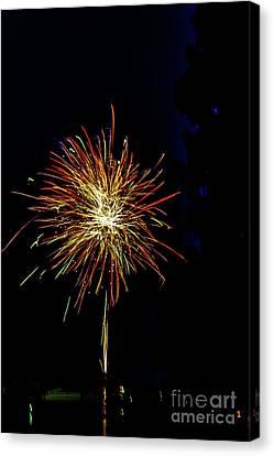 Fireworks Canvas Print by William Norton