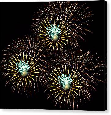 Fireworks - Yellow Spirals Canvas Print by Black Brook Photography