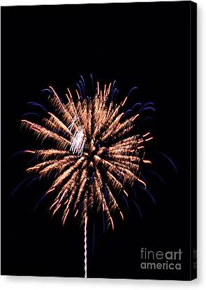 Fireworks8 Canvas Print by Malcolm Howard