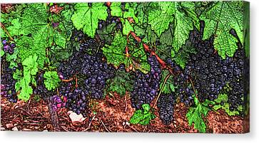 First Came The Grape Canvas Print by Leslie Montgomery