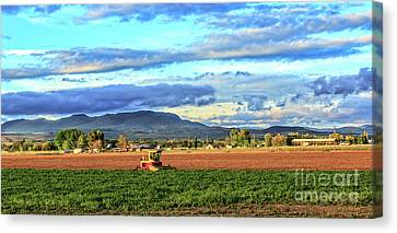 First Cutting Of Alfalfa Canvas Print by Robert Bales