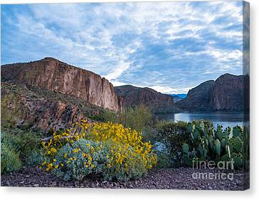 First Day Of Spring - Canyon Lake Canvas Print by Leo Bounds