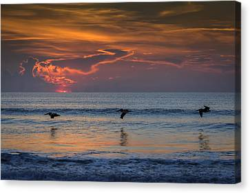 Canvas Print featuring the photograph First Flight First Light by Steven Sparks