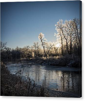 First Frost Canvas Print by Annette Berglund