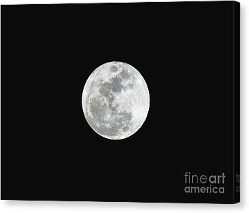 Canvas Print featuring the photograph First Full Moon Of 2016 by Eddie Yerkish