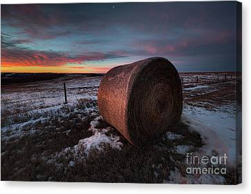 First Light Canvas Print by Ian McGregor